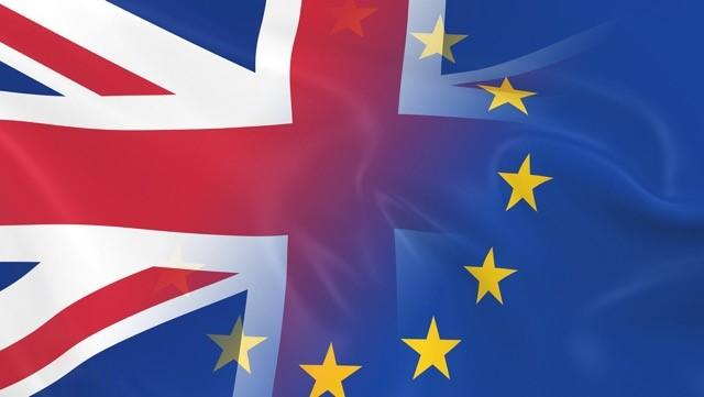 IOG members poll on EU Referendum