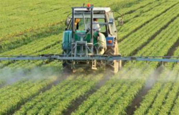 """United Nations/World Health Organisation panels conclude glyphosate """"non-carcinogenic"""""""