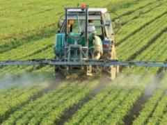 "United Nations/World Health Organisation panels conclude glyphosate ""non-carcinogenic"""